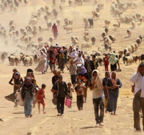 Cambiamento Climatico e Migrazioni